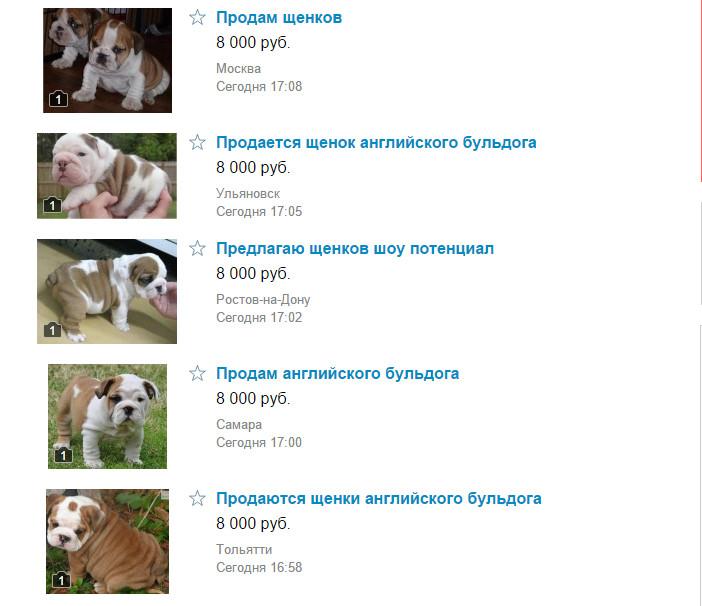 мошенничество с собаками