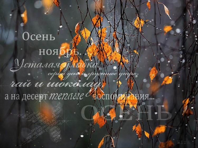 Знакомство 1 ноября..что предвещает