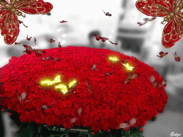 Цветы без повода скачать песню / stereopool. Gq.