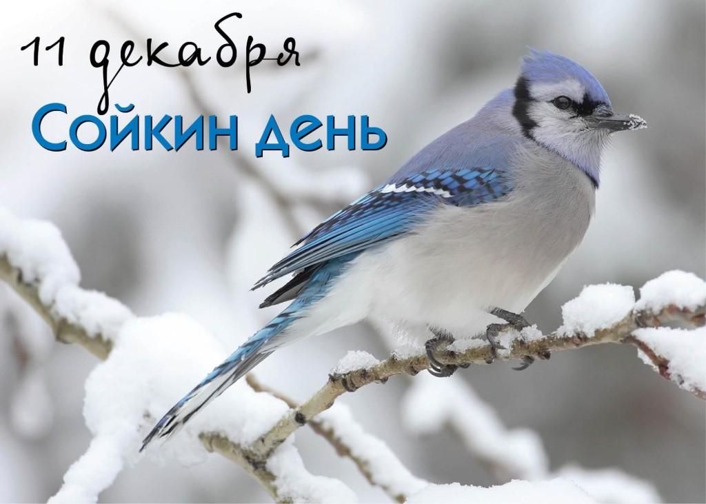 http://itd3.mycdn.me/image?id=849632901614&t=20&plc=WEB&tkn=*GDEtRhVHWKeIEN6UNi20Mxd-4Sk