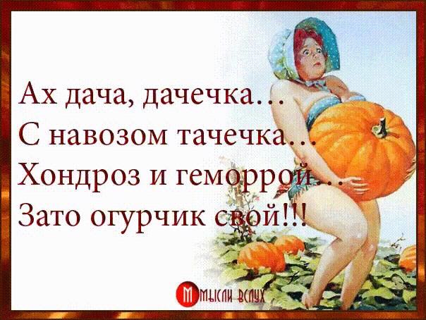 http://itd3.mycdn.me/image?id=858177533914&t=20&plc=WEB&tkn=*-34KajhDwoD5PVIeQpOmzmGANFo