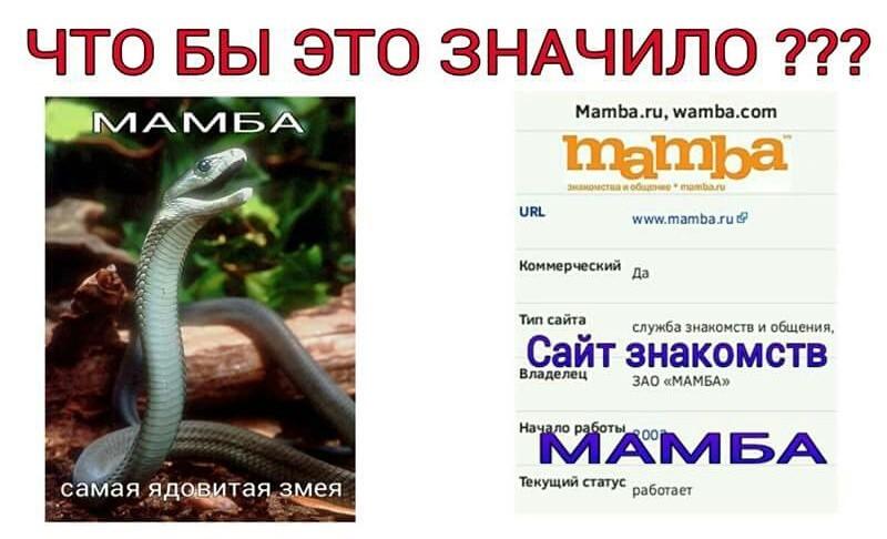 Мамба контакте зао