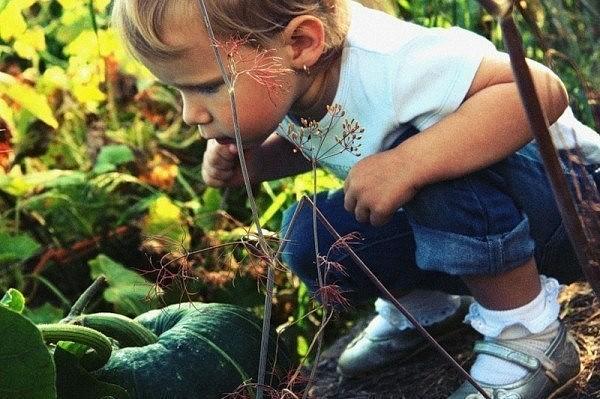 Природа для ребенка