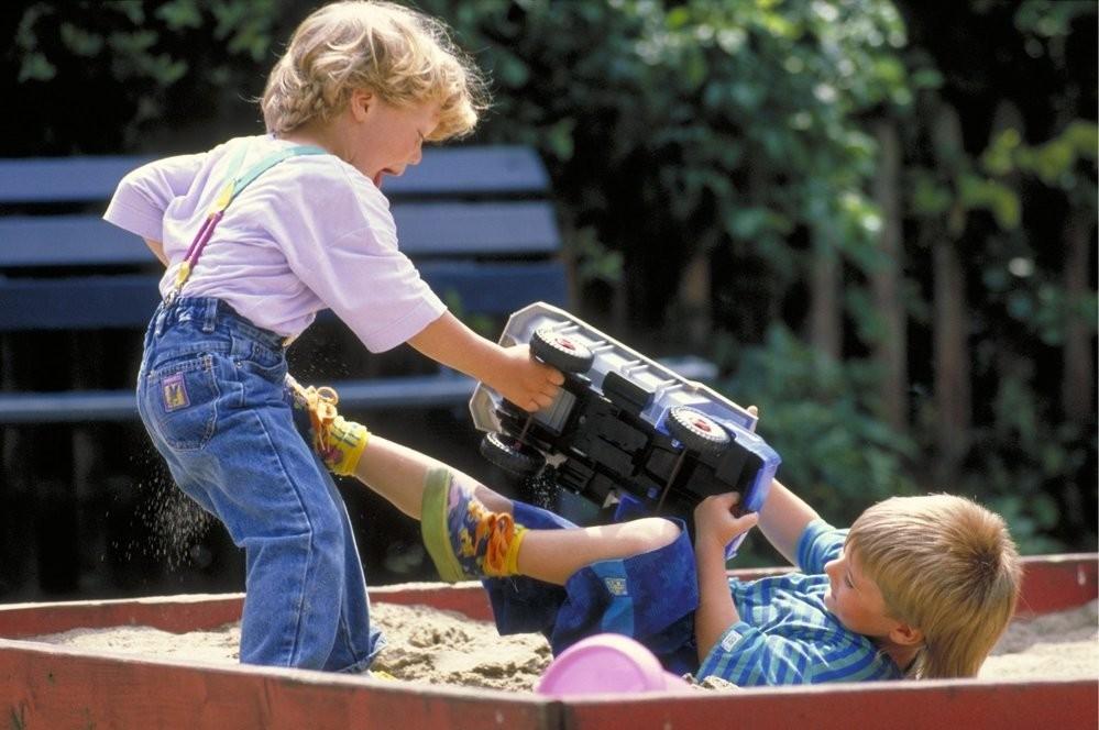 Что делать родителям, если их ребенок бьет детей в детском саду - 2
