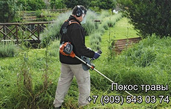 Предоставляем услуги по покосу травы с применением механической техники и ручного труда.