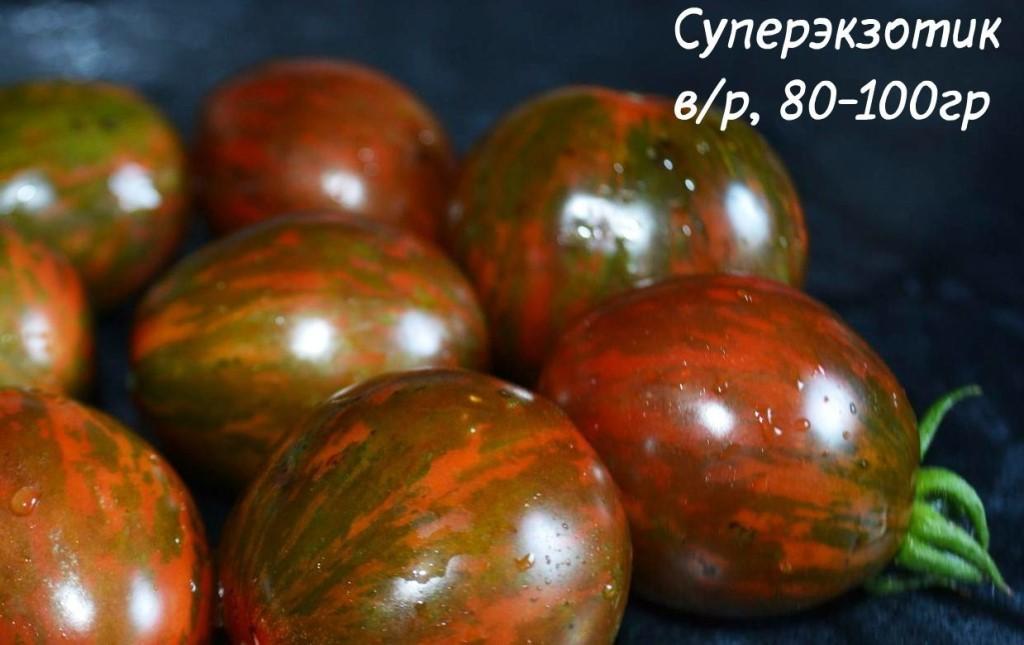 Продаю  семена редких  ,экзотических сортов томата.